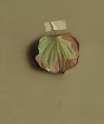 Bauhinia Leaf 1 artwork