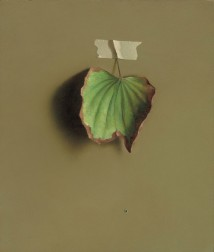 Bauhinia Leaf 2 artwork