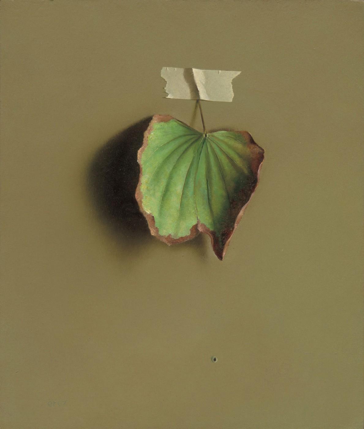 Bauhinia Leaf 2