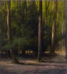 Wald III artwork