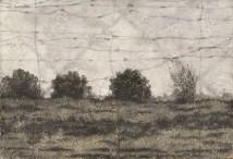 Landscape with Fance (c) artwork