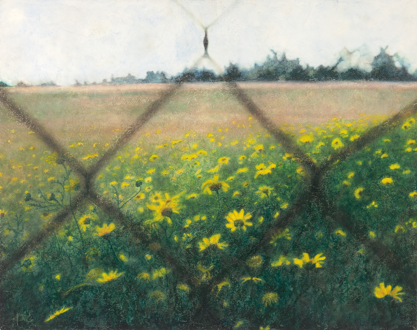 Landscape with fence 6