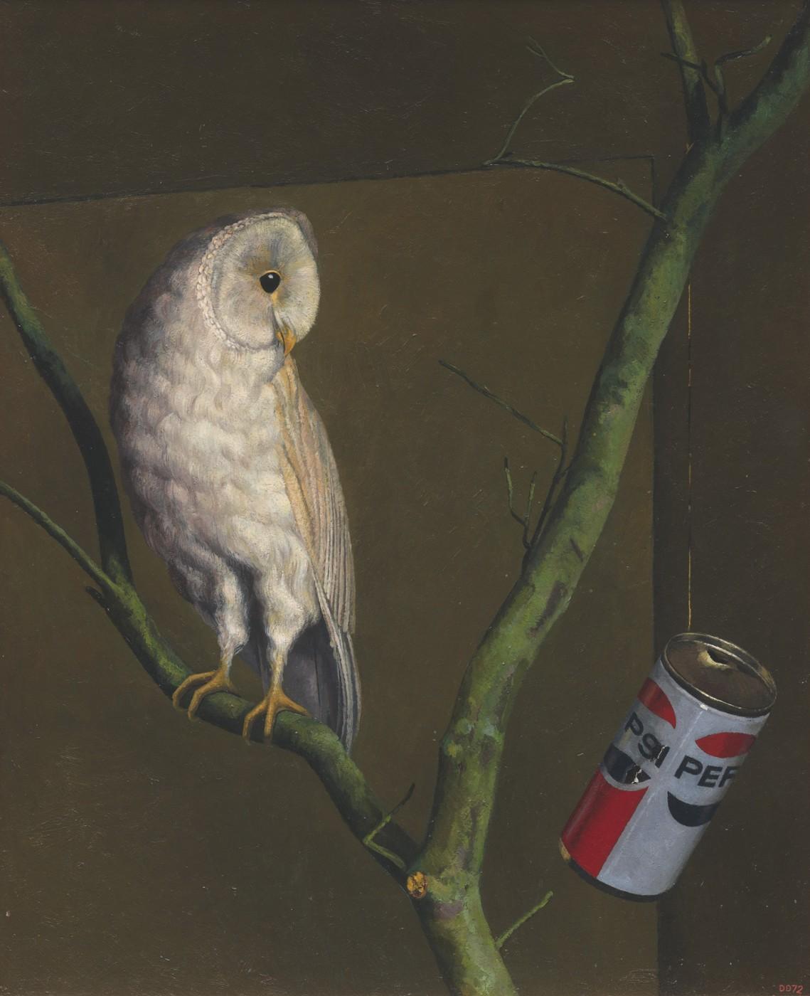 Owl and Pepsi
