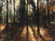 Forrest artwork