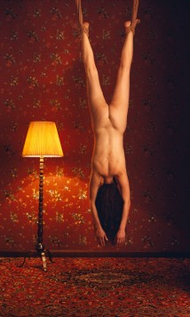 Self Portrait- Suspended W... artwork